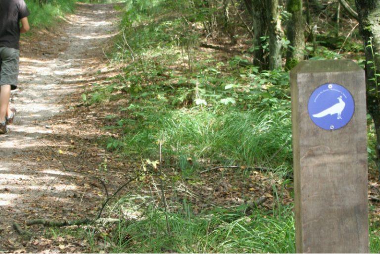 wandelpad-pauw